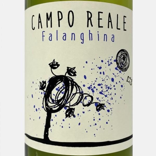 Chateau de la Deidiere-37500120-bei-Volkswein